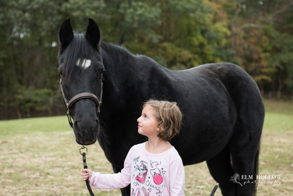 Black Dog Stables Fall 2018-35