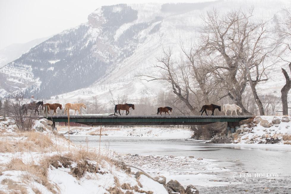 Montana 2018-173